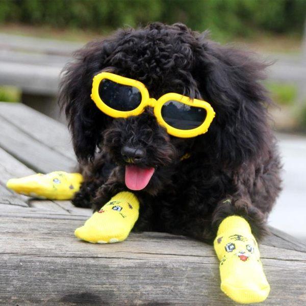 狗眼鏡寵物太陽鏡擋風鏡墨鏡小型犬專用護目鏡 狗狗裝扮飾品 聖誕狂購免運大購物