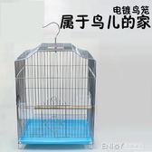 八哥畫眉虎皮牡丹鸚鵡鳥籠 加粗不銹電鍍鋼絲鳥籠大號 鳥籠子igo 溫暖享家
