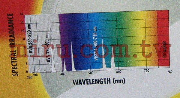 【西高地水族坊】ZOO MED(ZOOMED) 紫外線聚熱燈泡(UVA/UVB)100w