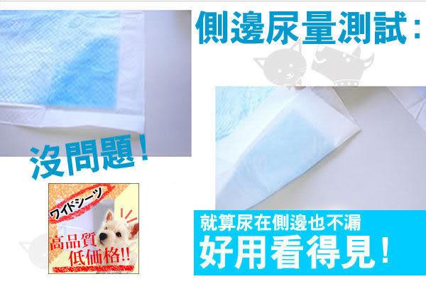 *WANG*【單包】【JB/弘友】業務用尿布100片/50片/25片