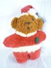 【震撼精品百貨】日本泰迪熊~鎖圈『聖誕紅』