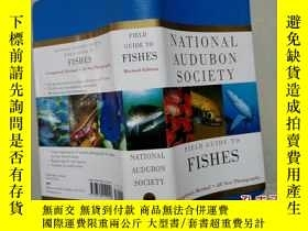 二手書博民逛書店FIELD罕見GUIDE TO FISHESY14489 PRE