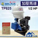 大井泵浦 TP825 加壓馬達。1/2H...
