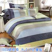 鋪棉床包 100%精梳棉 全舖棉床包兩用被四件組 雙人5*6.2尺 Best寢飾 FJ692