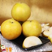 果之家 台灣嚴選特美17A優質青龍梨新興梨8顆禮盒(單顆600g)
