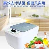 220V 大容量 家用臭氧機果蔬解毒機消毒洗菜機生態儀餐具殺菌器發生器 雅楓居