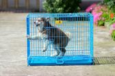 泰迪貴賓貓籠鋼鐵絲狗籠子小中大型犬用品  9號潮人館IGO