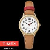 TIMEX 40週年紀念款金框數字咖啡皮帶錶x30mm 冷光夜光面板 TXTW2R40300 公司貨|名人鐘錶高雄門市