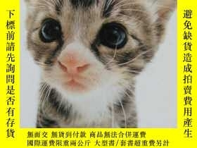 二手書博民逛書店Utterly罕見adorable catsY195634