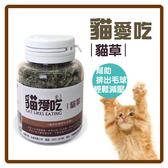 【力奇】貓愛吃 貓草(貓薄荷) 10g 可超取 (D632A02)