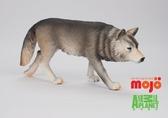 【Mojo Fun 動物星球頻道 獨家授權】 大灰狼 387026