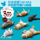 Norns【日本扭蛋TAKARA 休眠動...