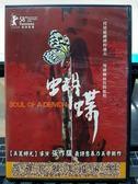 影音專賣店-P04-176-正版DVD-華語【蝴蝶】-曾一哲 程毓仁 陳佩君 詹正筠