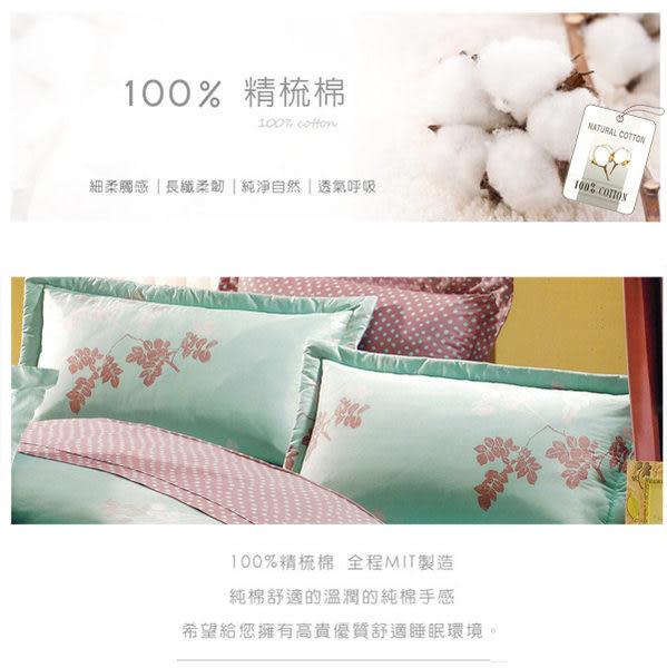 雙人加大床罩組 六件式 100%精梳棉 台灣製造 Best寢飾 CB088-2