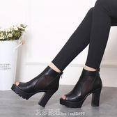 魚嘴鞋女高跟鞋粗跟涼鞋性感網紗鞋黑色厚底防水台網涼靴 艾莎嚴選