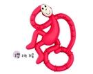 英國Matchstick Monkey跳舞猴牙刷固齒器(櫻桃猴)(MMD-004) 550元