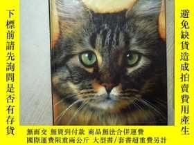 二手書博民逛書店LE罕見CHAT 那隻貓 大16開 05Y261116