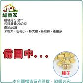 【綠藝家】G27.本土玉米種子20公克