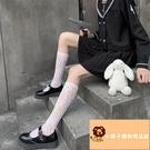 襪子女蕾絲鏤空學生可愛薄款網襪中筒襪甜美洛麗塔jk復古【小獅子】