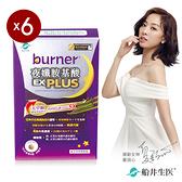 【船井】burner倍熱 夜孅胺基酸EX PLUS 40粒/盒 x6盒組
