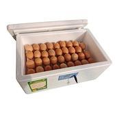 孵蛋器 全自動水床孵化機智能孵蛋器小型家用孵化器孵化箱雞鴨鵝鴿子鸚鵡