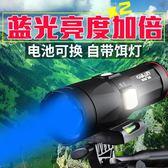夜釣燈釣魚燈紫光台釣超亮魚燈大功率充電藍光手電筒強光遠超200 智聯igo