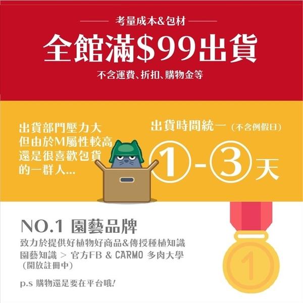 〔夏季熱銷〕CARMO多肉植物專用土/多肉介質【C002001】