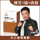 【人可和】 納麴A+(30粒/瓶)-納豆+紅麴+樟芝+Q10複方大勝單方魚油