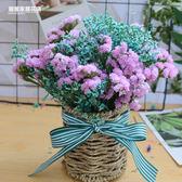 干花花束勿忘我家居客廳花藝裝飾擺設套裝云南天然滿天星 生日禮物
