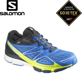 【SALOMON 索羅門 男款X-Scream 3D GORE-TEX 輕量健行鞋〈聯盟藍/壁虎綠〉】375965/休閒鞋/登山鞋