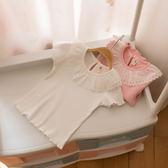 女童蕾絲翻領短袖T恤秋冬嬰兒上衣兒童半袖打底衫女寶寶上衣【四季生活館】