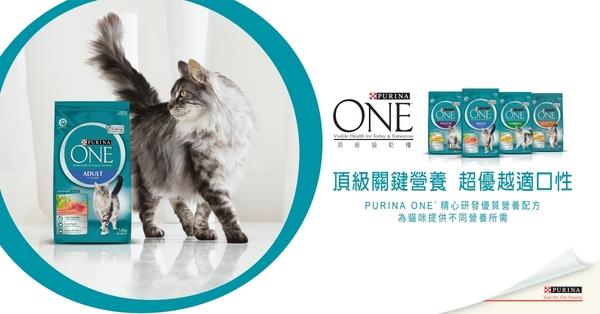 【寵物王國】普瑞納-ONE CAT 頂級貓乾糧【成貓化毛雞肉配方】1.5kg x2包組 (102408)