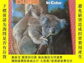 二手書博民逛書店The罕見Australian Bush ln colorY316240 看圖片 看圖片