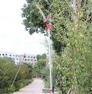 園林工具 修剪樹枝果樹園藝剪刀高枝剪高空鋸子伸縮修枝剪 摘果器  提拉米蘇