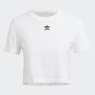 Adidas Originals ADICOLOR CLASSICS 女裝 短袖 T恤 短版 捲袖 純棉 白【運動世界】GN2803