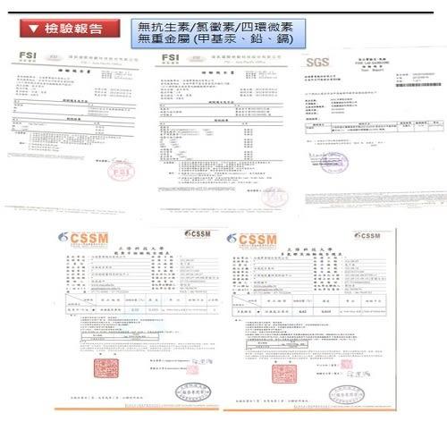 快速出貨/產銷履歷無刺虱目魚柳24包(300g/包)