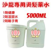 (現貨免運)離子藥水/溫塑專用藥水 燙髮 沙龍專用 容量5000ML *HAIR魔髮師*