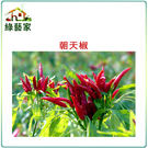 【綠藝家】G29.朝天椒(瑞興)種子15...