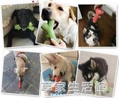 狗狗玩具 磨牙棒耐咬潔齒拉布拉多哈士奇金毛大型犬骨頭咬膠玩具·享家生活館
