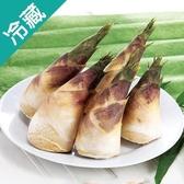特級綠竹筍2入約550g/袋【愛買冷藏】