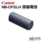 原廠電池【和信嘉】Canon NB-CP2LH 鋰電池 適用 SELPHY 相印機 CP1200 CP1300 台灣彩虹公司貨