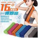 預購-雙色戶外運動冰巾