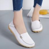 平底鞋 韓版真皮豆豆鞋 大碼時尚軟底鞋【多多鞋包店】z6733