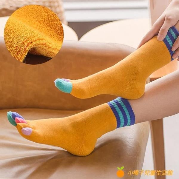 4雙裝 加厚純棉毛圈五指襪保暖中筒高腰加絨毛巾襪【小橘子】
