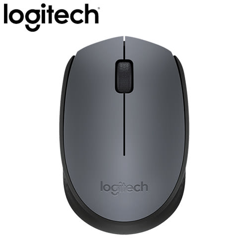 Logitech 羅技 M171 2.4G 無線滑鼠 灰【限時下殺省$40】