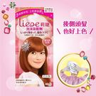LIESE【莉婕】泡沫染髮劑 魅力彩染系列 寶石粉紅色 (34ml+66ml+8g)