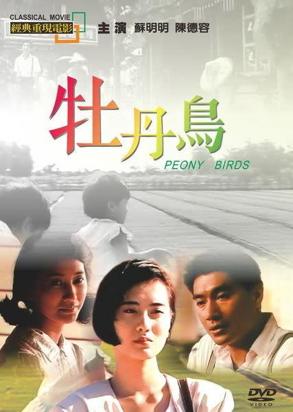 經典重現電影114:牡丹鳥 DVD(購潮8)