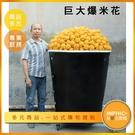 INPHIC-大型爆米花模型 巨大爆米花 玉米 電影院爆米花-IMFO001104B