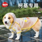 寵物雨衣狗狗雨天衣服四腳防水小型犬全包肚兜雨披【匯美優品】
