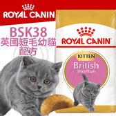 【zoo寵物商城】FBN 新皇家飼料《英國短毛幼貓BSK38配方》2KG